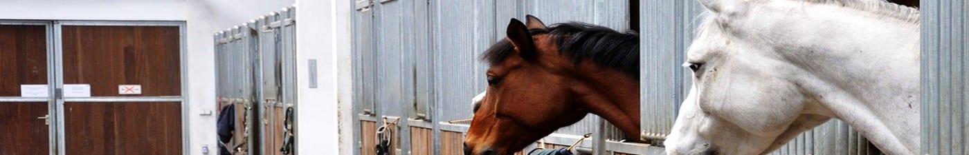 inner-banner-equestrian-finance-
